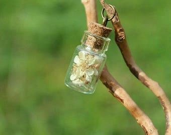 Bottle glass, dried flowers, beige, white