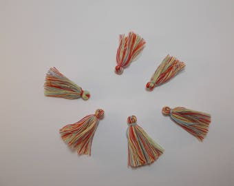 1 set of 6 colorful charms or tassels