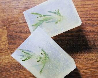 Herb Garden | Handmade Olive Oil Soap