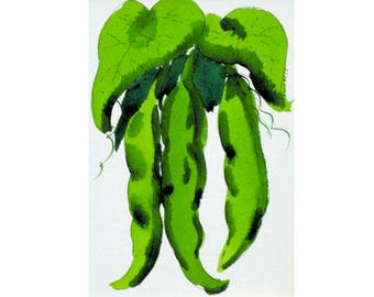 Beans, green beans, watercolor, pen and ink, kitchen art, 8 x 10