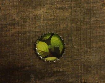 Magnet gift lime leaves