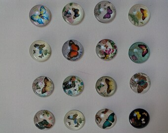 CABOCHON glass with different color Butterfly