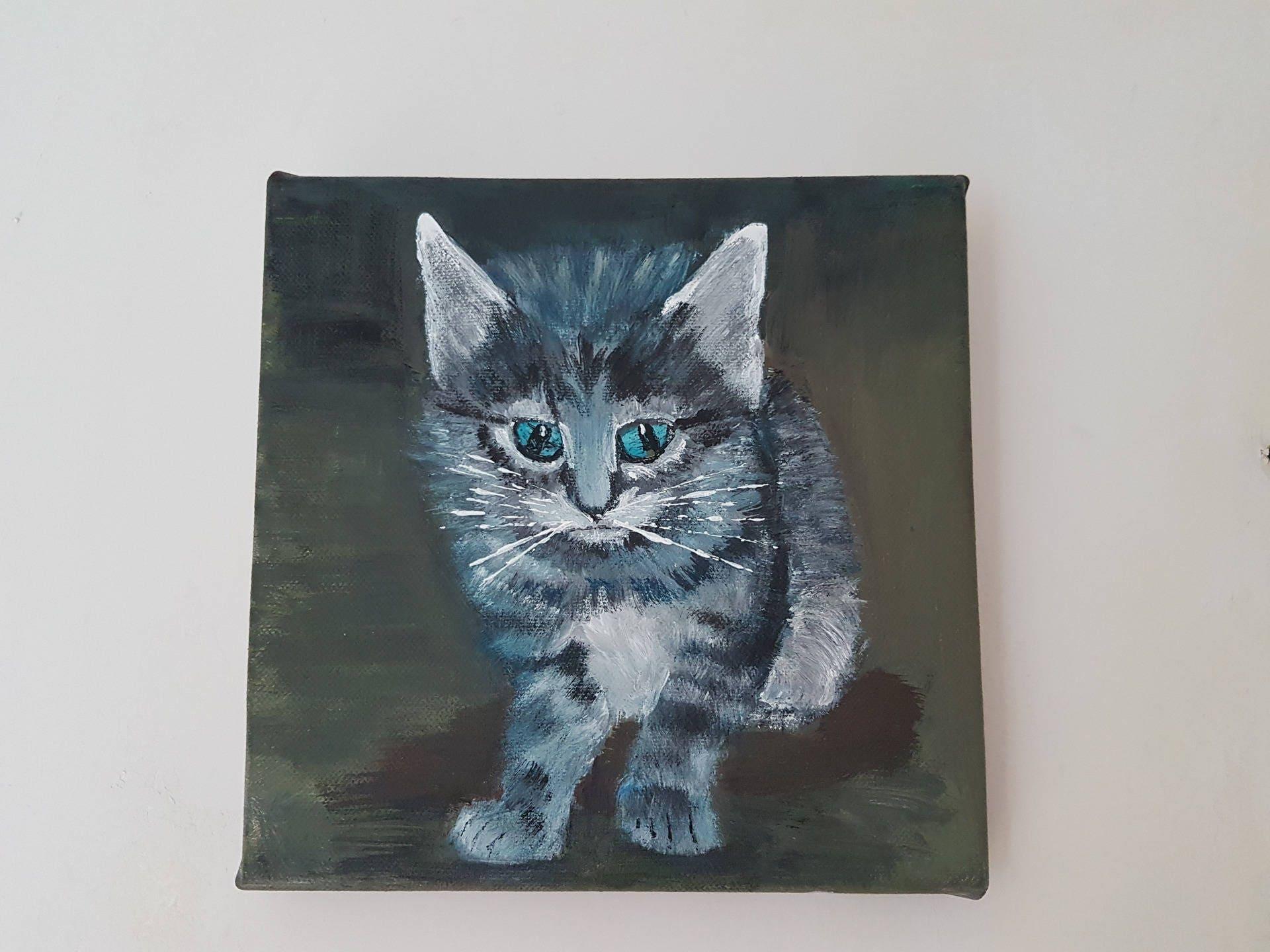Petit chaton gris avec ses yeux bleus - Yeux bleu vert gris ...