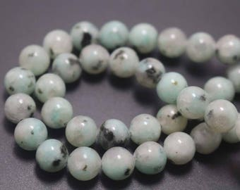 Green Sesame Jasper Beads, Natural and Smooth Round Beads,Green Sesame Jasper Beads ,15'' per strand 4mm 6mm 8mm 10mm 12mm