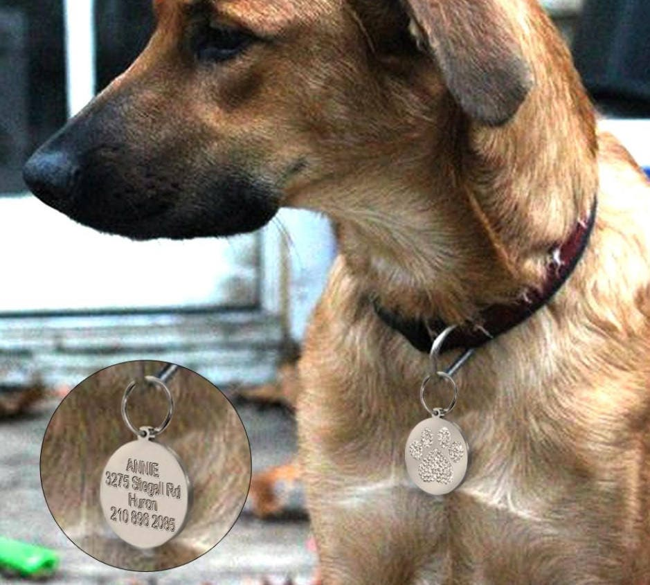 white customized laser engraved dog id tag personalized dog id tag