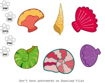 Under the sea SVG Files, Conch svg, Seashell svg, Nautilus Clipart,  cricut, cameo, silhouette cut files commercial & personal use