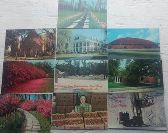 Vintage Louisiana Post Cards a Nice Selection!