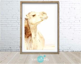 Camel Print, Large Poster, Digital Download, Printable, Minimalist, Modern, Wall Art, Home Decor, Photography, Desert, Animal, Smile