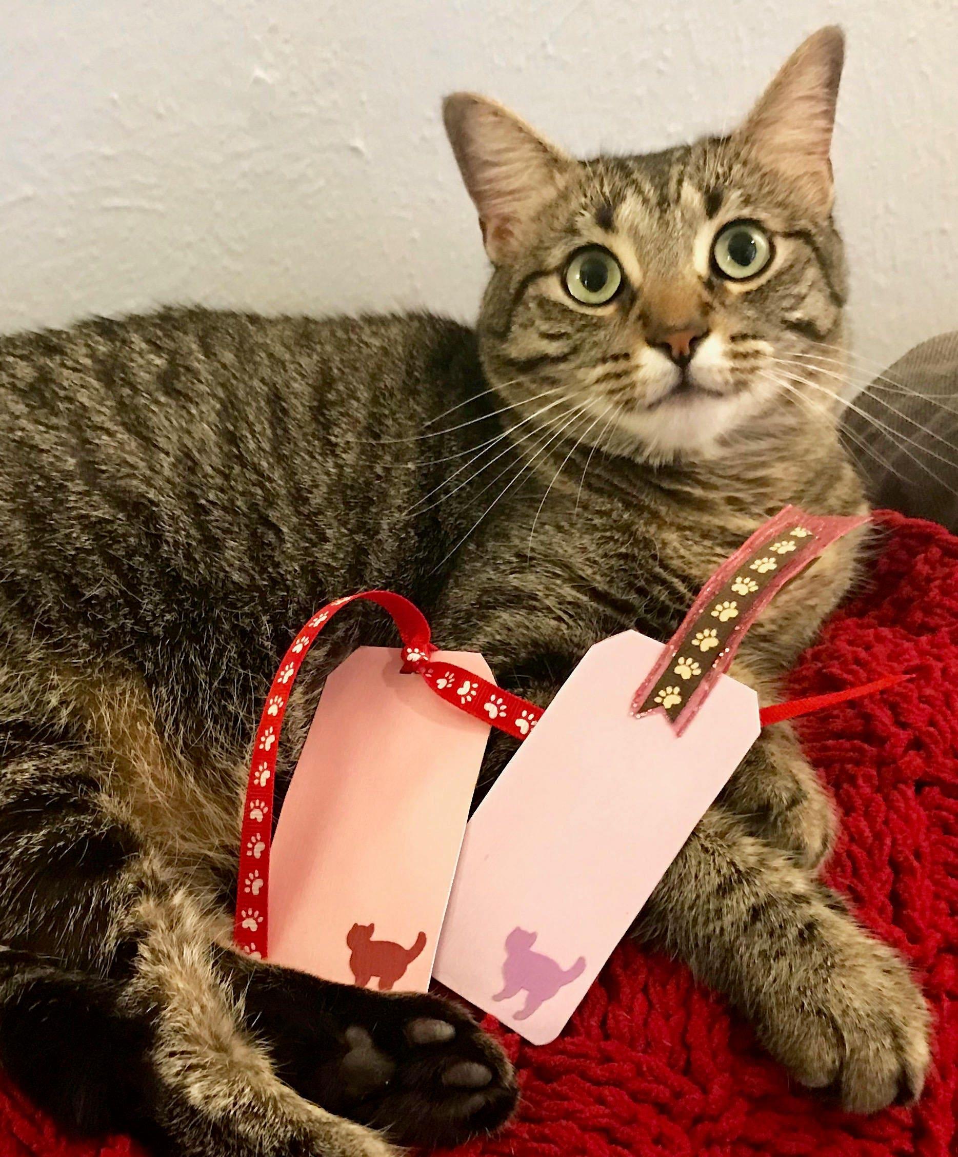 Handmade Cat Bookmark / Cat Gift Tag in Purple | Cat Decor | Cat ...