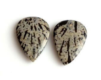 Black Coral Pear Pair Cabochon,Size- 19x13, MM, Natural Black Coral, AAA,Quality  Loose Gemstone, Smooth Cabochons.