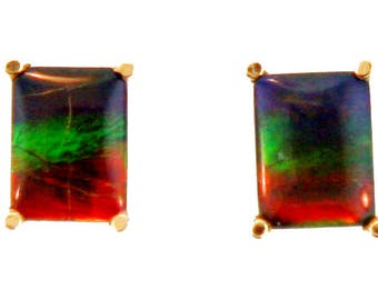Pair of  Emerald Cut Canadian Ammolite set in 14k Yellow  Gold