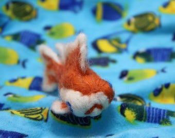 Orange fantail goldfish