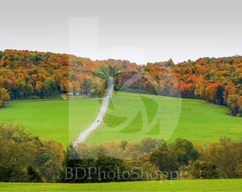 Country Road Climbs an Autumn Hill | Nature Photo Art | Gift | Fine Art Photography | Personalization | BDPhotoShoppe | Home Office Decor