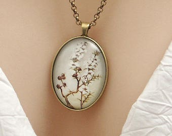 White Manuka flower, New Zealand vintage art print, large oval Picture Pendant, 40x30mm, glass dome pendant, cameo