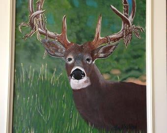 No: 134 deer