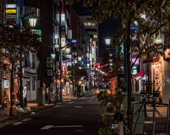 Japan art, Japanese wall art, fine art print, photography print, wall art, decor, tokyo