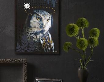 Table displays OWL OWL