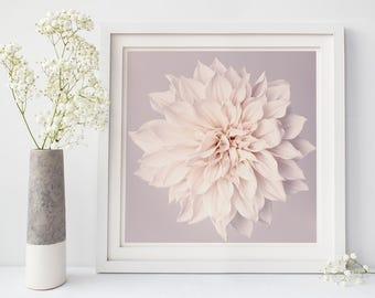 Bedroom Wall Art, Living Room Wall Art, Floral Print, Dahlia Flower Wall Art, Neutral Decor, Large Wall Art, Square Print Art, White Flower