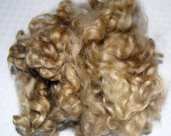 Cotswold Sheep Curls,  Wool Doll Hair, Blythe Doll Reroots, Curly Doll Hair, Locks for Spinning, Felting, Blond 1 oz.