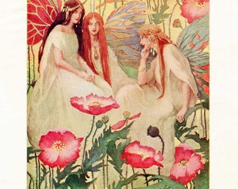 Vintage Fairies Among the Poppy Flowers 1909 Bookplate Illustration Print by Gertrude Kay, Original Story Book Print, Fairies and Flowers