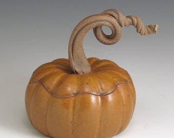Pumpkin Jar, Handmade, Pottery, Stoneware, John Bauman SHIPPING INCLUDED
