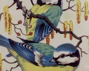 Look What I did using Iron On Transfers Retro Blue Tits Birds