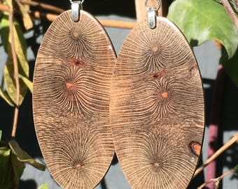Super Triple Fireworks Large Macadamia Wood Lightweight Earrings