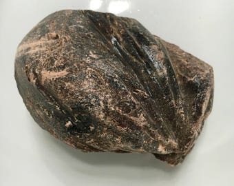 Dragons Blood Resin, Wildharvested Dragons Blood Resin, Powerful, Ancient, Dark, Deep Incense, Medieval Alchemy, All Natural Dragons Blood