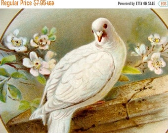 ONSALE Rare Frame worthy Antique German Stunning Lithograph Dove Easter Blessing Trade Card Artist W. Hagelberg