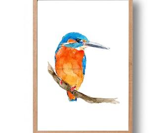 kingfisher art print, Kingfisher 2 watercolor print ,bird art, birds watercolor, nursery art, wild life art, orange, thejoyofcolor, birds