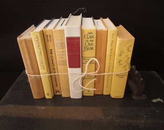 Yellow Sandstone Book Stack - Books for Decor - Books by Color - Vintage Books Lemon Squash Maize Sand Yellow Color