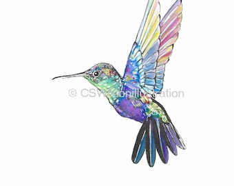 Hummingbird - Fine Art Print