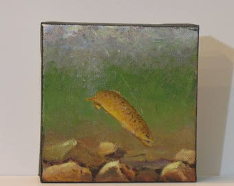 """Trout painting, fishing art , brown trout, 5"""" x 5"""", fishermans gift,  no frame needed"""