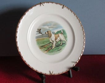 Crooksville China Wall Plate with Spaniel Dog