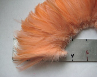 "Three inch strip of PEACH ORANGE Strung Rooster HACKLE feathers - individual feather about 3.5"" long"