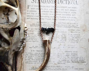 tine/ antler tine necklace