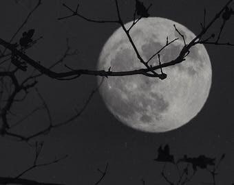 Strawberry Moon - Dark Photography, Digital Photographic Print, Full Moon, Wall Art, Home Decor, Night Photography