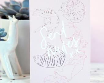 Send Nudes Valentine's Card, Valentine's Day, Meme Card, Funny Card, Cute Greetings Card, cat valentine card