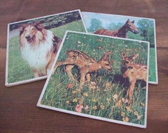 Vintage Frame Tray Puzzle Set Animal Photos