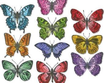 20 Piece Flutter By Butterfly Die Set - Sizzix Tim Holtz Alterations Framelits Die Set