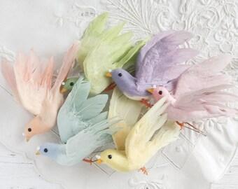 Rainbow Birds - 6 Colorful Feathered Craft Birds