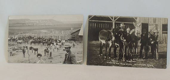 2 N.E. Johnson Photo Postcards RPPC.  H.B. Simmons Ranch Burns, Oregon