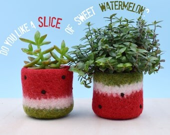 Watermelon vase / Felt succulent planter / summer gift / felted planter / cactus vase / Set of 2 / cabin decor / gift for her