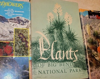 Wildflowers of the Big Bend, Guadalupe, Barton Warnock, two volumes, signed; Plants of the Big Bend
