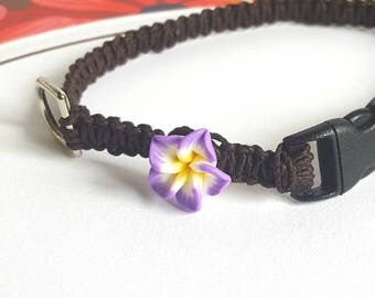 Purple Flower Collar, Brown Hemp Pet Collar, Cat, Small Dog, Kitten, Adjustable, Boho Hemp Pet Collar