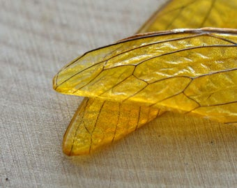 REAL Cicada Beetle Wing Charm Preserved in Yellow Resin Nature Pendant Preserved Insect Wing  Vintage Jewelry Supplies (BC037)