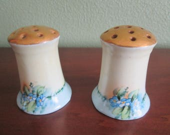 Prussia Hand Painted Salt and Pepper Shakers Blue Flowers