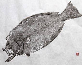 California HALIBUT - Original Gyotaku - traditional Japanese fish art (6)
