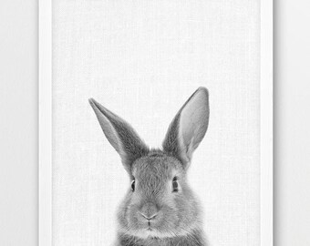 Rabbit Print, Cute Bunny Print, Woodlands Animals Photo, Nursery Baby Shower Gift Wall Art, Baby Animals Black White Photo, Kids Room Decor