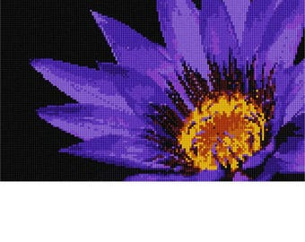 Needlepoint Kit or Canvas: Lily In The Dark